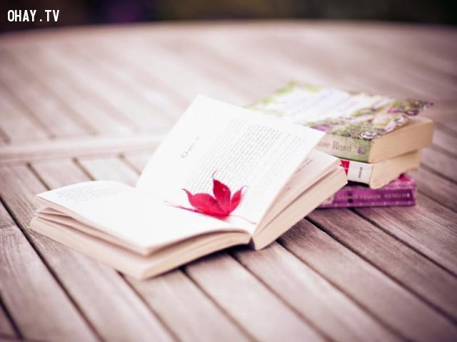 Bạn thích dòng phim dành cho phái đẹp? Những cuốn tiểu thuyết lãng mạn?