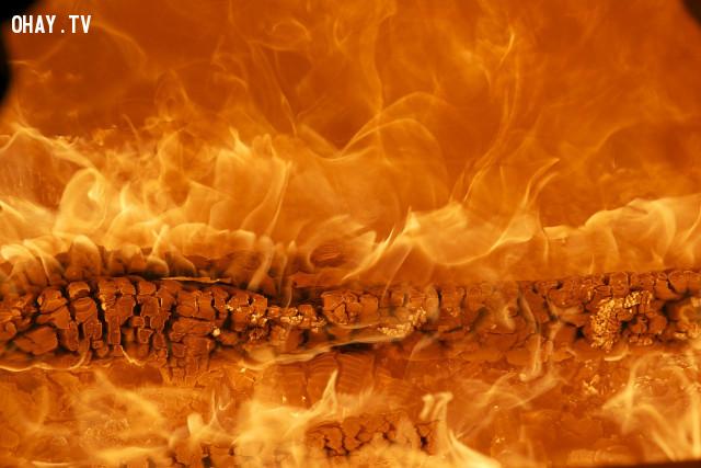 Cháy Nhà,kỹ năng sinh tồn
