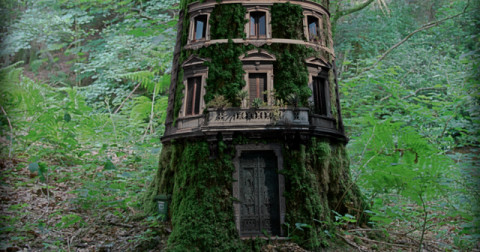 Những ngôi nhà lơ lửng trên cây đẹp như mơ như truyện cổ tích