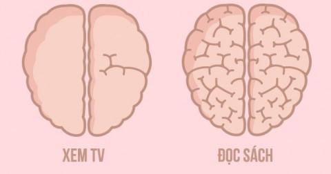 9 ví dụ thú vị về cách mà chúng ta tác động lên bộ não