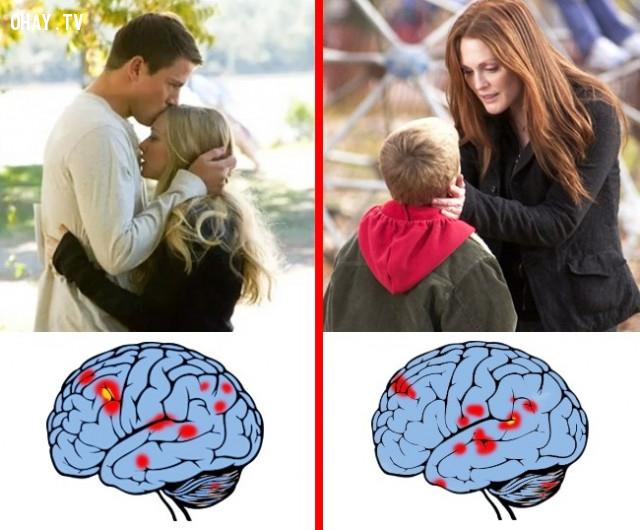 3. Sự tương đồng giữa tình yêu và tình mẫu tử,não bộ,cơ thể con người