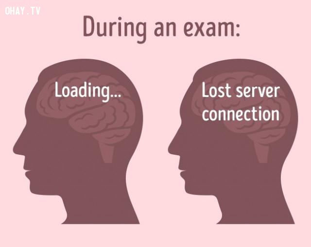 8. Căng thẳng kéo dài gây tổn hại não,não bộ,cơ thể con người