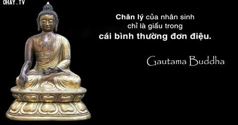 100 lời Phật dạy giúp bạn nhận ra chân lý cuộc đời – Cùng đọc, ngẫm và ngấm!