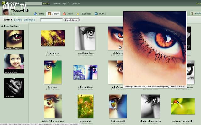 HoverZoom,extension chrome,trình duyệt chrome,tiện ích hữu dụng