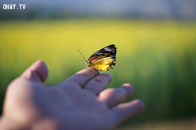 Để trở thành người có thái độ sống tích cực, bạn cần phải:,sống tích cực,suy nghĩ tích cực