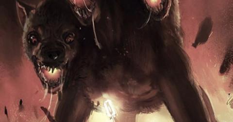 Chó mực có thể nhìn thấy ma quỷ, có thật không?