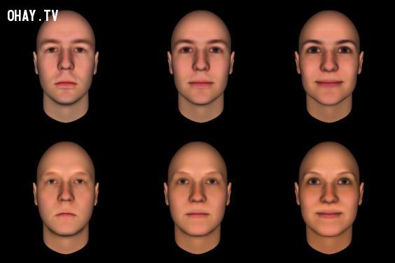 ,khuôn mặt,tâm lý học,hiệu ứng lan tỏa,sự rập khuôn