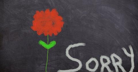 5 cách tốt nhất để nói lời xin lỗi