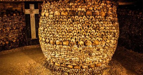 Chuyện như phim: Từ hầm mộ Paris đột nhập vào hầm rượu để ăn trộm