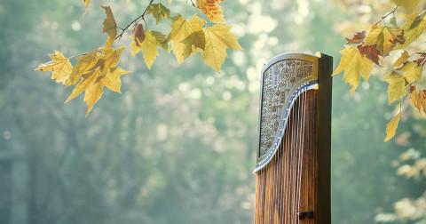 Bí quyết tự học Guzheng