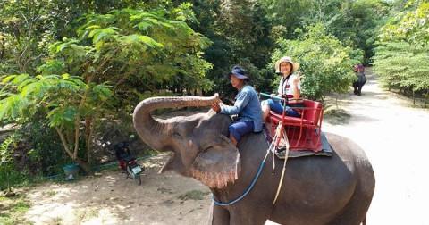 Kinh nghiệm du lịch Thái Lan tự túc: Băng Cốc - Pattay cho chuyến đi đáng nhớ