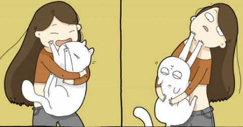 Cuộc sống thú vị khi nuôi một chú mèo!