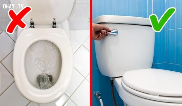 4. Không đậy nắp toa lét khi xả nước,sai lầm thường mắc,việc thường làm sai