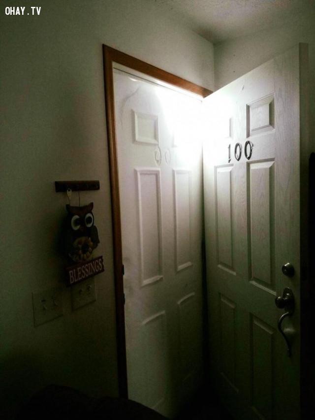 Chỉ sau một buổi tối tuyết đã rơi in thành hình cánh cửa ,hình ảnh khó tin,thiên nhiên