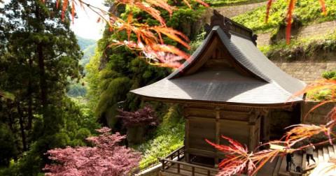 1 015 nấc thang đến với ngôi đền chốn tiên cảnh ở Nhật Bản