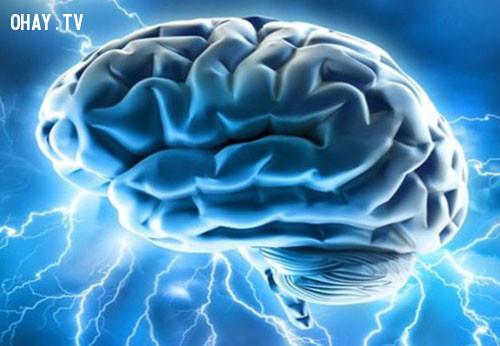 3.Não bộ có thể tạo ra điện năng,siêu năng lực,siêu nhân,khả năng siêu phàm