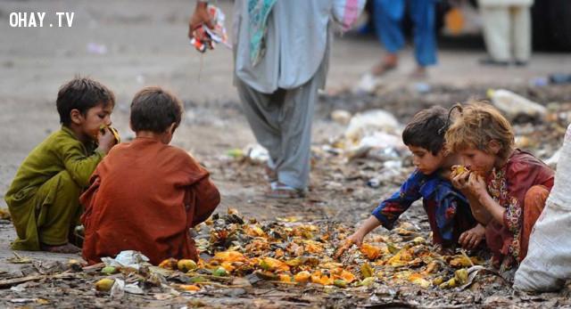1. Nạn đói sẽ không còn nữa,ngừng ăn thịt,ăn chay,chuyện gì sẽ xảy ra nếu