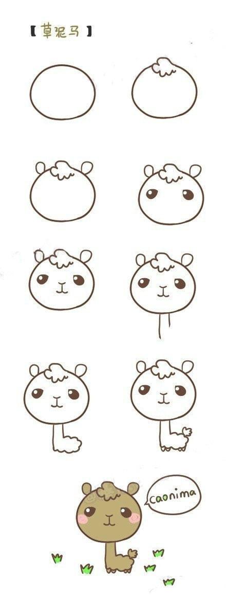 6. Lạc đà Alpaca,