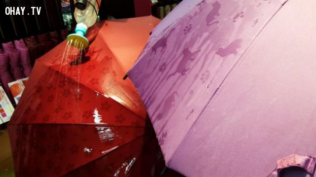 10. Khi trời mưa, một số chiếc dù sẽ thay đổi màu hoặc có những hình vẽ xuất hiện trên chúng.,phát minh hữu ích,người nhật bản