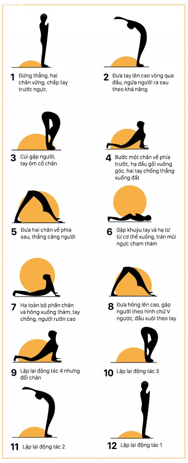 ,tư thế yoga,tập thể dục,yoga căn bản