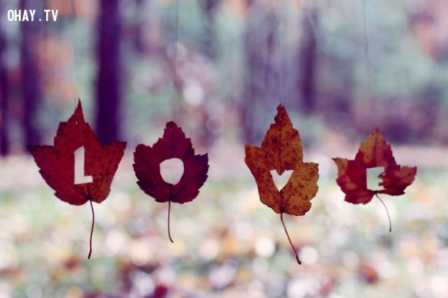 ,tình yêu,sự hi sinh