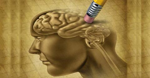 Khoa học chứng minh: Người hay quên có bộ não thông minh hơn người thường