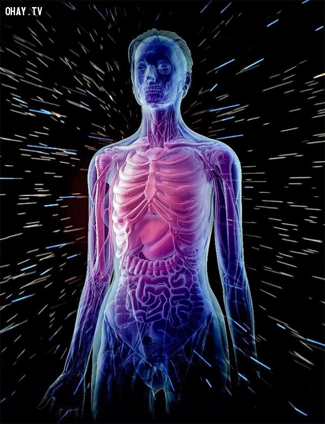 3. Tiếp xúc với phóng xạ sẽ ảnh hưởng đến sức khoẻ của bạn,khám phá vũ trụ,cơ thể con người,thiên văn học