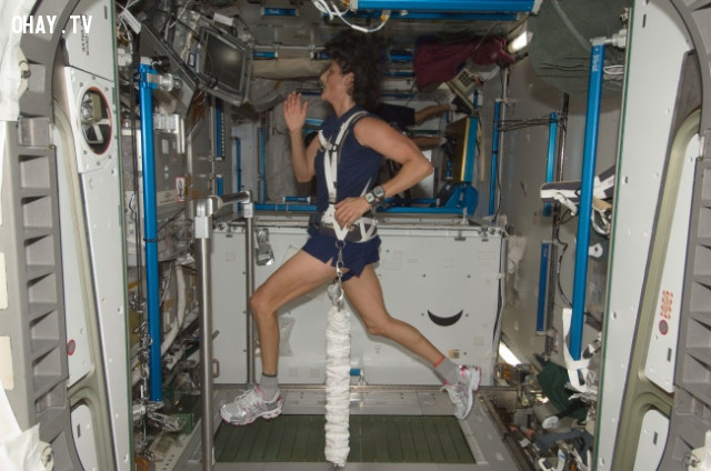 7. Cơ bắp của bạn sẽ trở nên yếu đi,khám phá vũ trụ,cơ thể con người,thiên văn học