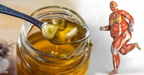 8 lợi ích từ mật ong đối với cơ thể con người