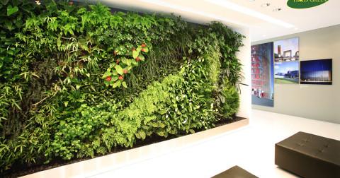 Tại sao nên chọn vườn thẳng đứng  trong thiết kế nội ngoại thất và những lợi ích không ngờ