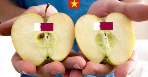 Truyền thuyết 'Ai là người Việt cũng có khả năng bẻ đôi trái táo'
