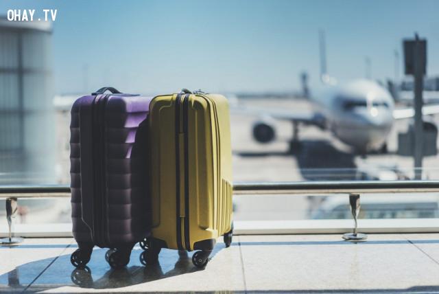 Khách hành và dịch vụ hành lý, cả ở sân bay lẫn máy bay - 26%,giá vé máy bay,những lưu ý khi đi máy bay