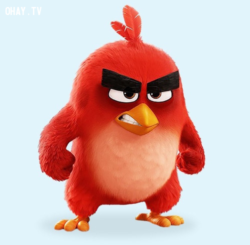 Chú chim giận dữ Red trong phim Angry birds...,nhân vật hoạt hình,hoạt hình disney