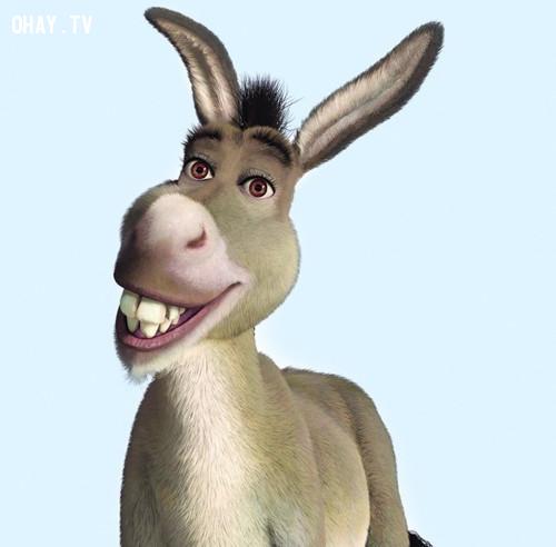 Chú lừa dễ thương trong phim Shrek...,nhân vật hoạt hình,hoạt hình disney