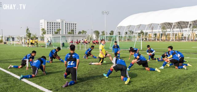 ,PVF,bóng đá Việt Nam