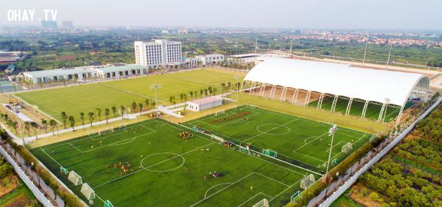 Sân cỏ nhân tạo có mái che,PVF,bóng đá Việt Nam