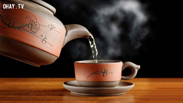 ,trà nóng,ung thư,1001 câu hỏi vì sao