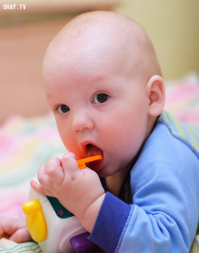 Sử dụng bài kiểm tra cuộn giấy vệ sinh khi chọn đồ chơi.,cách nuôi con