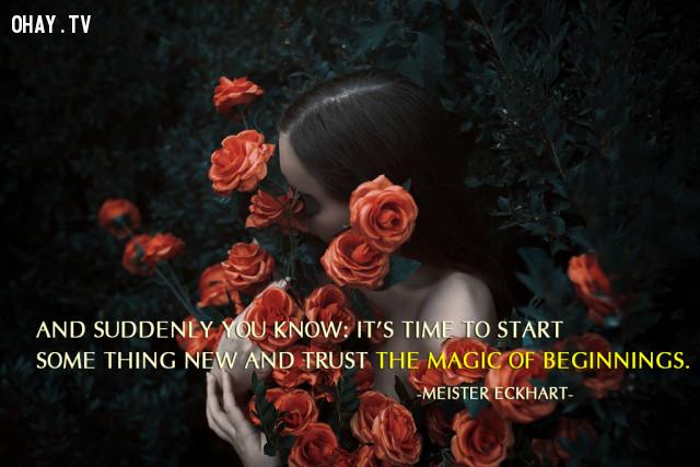 Và bạn chợt nhận ra rằng: Đã đến lúc để bắt đầu một điều gì đó mới mẻ và tin tưởng rằng điều kỳ diệu nhất định sẽ xảy ra. (Meister Eckhart),câu nói hay,câu nói truyền cảm hứng,năm mới