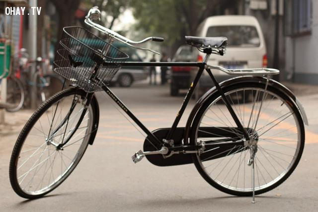 6. Gần đi xe đạp, xa đi xe bus, tàu điện,sống xanh,sống sạch,ô nhiễm môi trường,biến đổi khí hậu