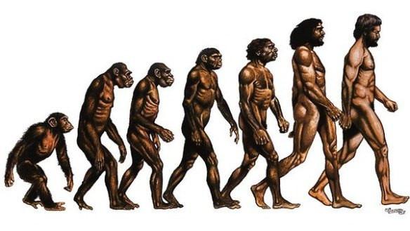 1. Con người có nguồn gốc từ khỉ?,những điều thú vị trong cuộc sống,lời nói dối