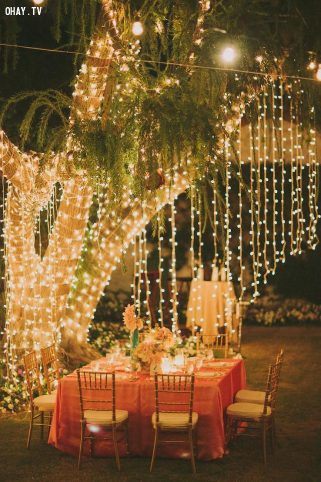 Đèn quấn vòng quanh thân cây,đèn led,trang trí nhà cửa