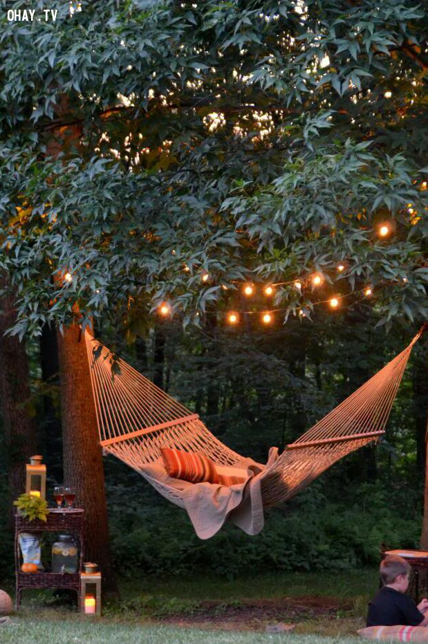Đèn trên cây tạo không gian lãng mạn, ấm áp,đèn led,trang trí nhà cửa