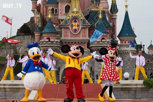 """CÚN CƯNG, MÈO YÊU Ư?! """"CHÚNG TÔI RẤT TIẾC"""" – DISNEY PARK,công viên Disney"""