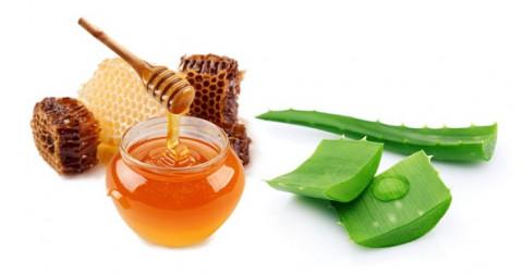 Cách làm đẹp da với lô hội và mật ong tại nhà hiệu quả