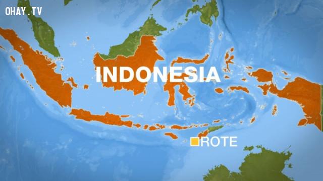 5. Indonesia: GDP bình quân: 3.347 USD,Đông Nam Á,GDP,Kinh tế