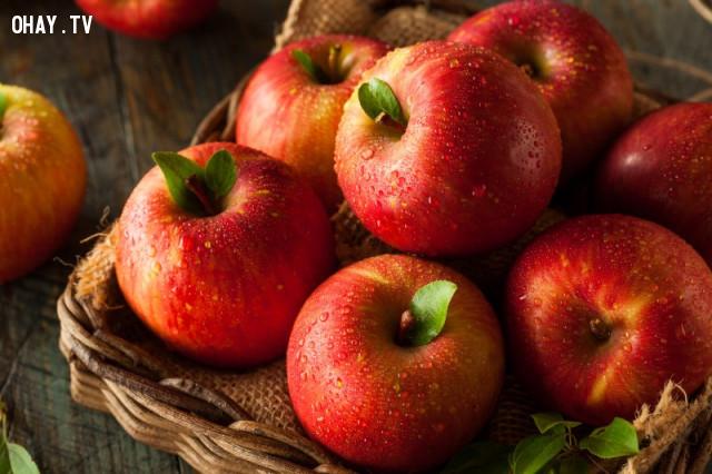 Định luật trái táo,định luật cuộc đời,suy ngẫm