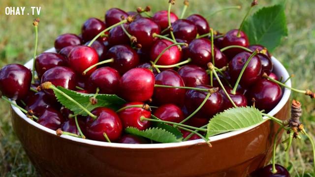 2. Cherry Chile,hoa quả,buổi tối