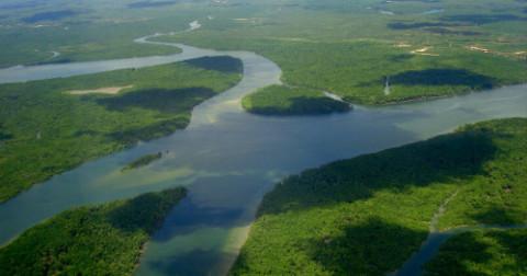 Tại sao sông Amazon dài hơn 6.000km không có cây cầu nào bắc ngang?