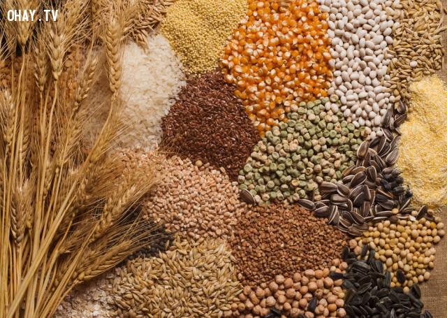 3. Các loại hạt,lão hóa,thực phẩm tốt cho sức khỏe